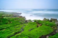 Laomei gräsplanrev - säsongsbetonade särdrag för Taiwan norrkust, skott i det Shimen området, nya Taipei, Taiwan Fotografering för Bildbyråer
