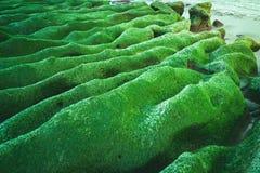 Laomei Green Reef in Shimen, New Taipei, Taiwan. stock images