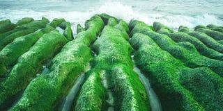 Laomei Green Reef in Shimen, New Taipei, Taiwan. From Shimen, New Taipei, Taiwan royalty free stock images