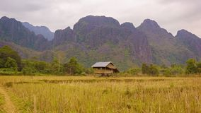 Laos. Empty rice field with straw on a background of mountains stock footage