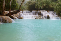 Laos fall d Stock Photography