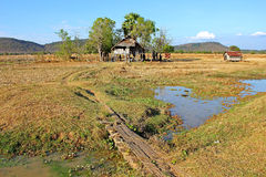 Laos landscape royalty free stock photography