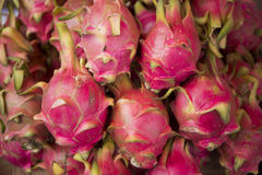 LAOS LUANG PRABANG MARKET DRAGONFRUIT. Dragonfruits at the Market in the town of Luang Prabang in the north of Laos in Southeastasia Royalty Free Stock Image