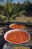 LAOS LUANG PRABANG NAM KHAN RIVER FOOD SPICES. Chili at the Nam Khan river in the town of Luang Prabang in the north of Laos in Southeastasia Stock Photo