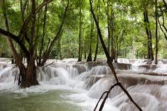 Tad Sae Waterfall Royalty Free Stock Photos