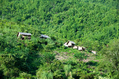 Laos, Mekong river side. Small houses in green forest Stock Images