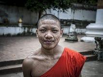 Laos michaelita Fotografia Royalty Free