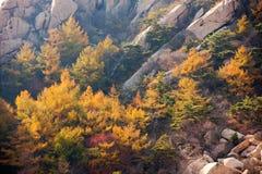 Laoshan mountains beautiful autumn scenery of China. The beautiful autumn scenery, filming the Qingdao laoshan  mountain scenic spot in China Stock Photography