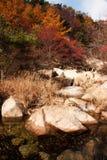 Laoshan mountains beautiful autumn scenery of China. The beautiful autumn scenery, filming the Qingdao laoshan  mountain scenic spot in China Stock Photo