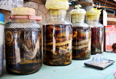Laotian people made traditional liquor fermented and pickled wit Royalty Free Stock Image