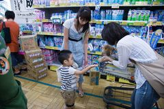 Lap dog in japan shop stock photo