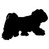 Lap dog silhouette on a white background.  vector illustration