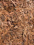 Lapacho - Kräutertee lizenzfreies stockfoto