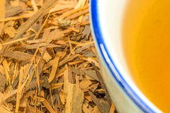 Lapacho tea Royalty Free Stock Photography