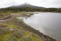 Lapataia fjärd längs den kust- slingan i Tierra del Fuego National Park, Argentina Royaltyfri Fotografi