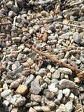 Lapida il liptovska Mara Fotografia Stock Libera da Diritti