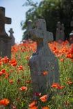 Lapide del cimitero con i papaveri Fotografie Stock