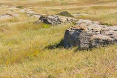 Lapide des rochers sur l'herbe sèche dans la steppe Photographie stock libre de droits