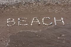 Lapide le fond de mer en sable humide de plage Images libres de droits