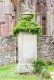 Lapide molto vecchia con le foglie verdi fotografie stock libere da diritti