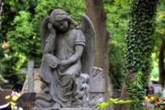 Lapide nel vecchio cimitero Fotografie Stock