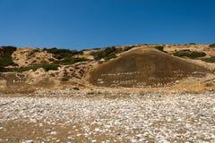 Lapidez les écritures et les coeurs inscrits d'amour sur une colline à la plage d'Aphrodite Rock en Chypre Image stock