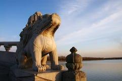 Lapidi il leone Immagini Stock
