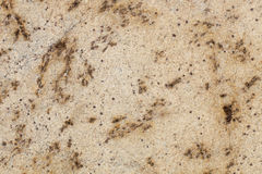 Lapidux Gold Granite Royalty Free Stock Images