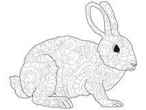 Lapin antistress adulte de coloration, lièvre, modèle animal, Astrakan r Images stock