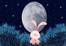 Lapin avec la lune ovale pendant la nuit Images libres de droits
