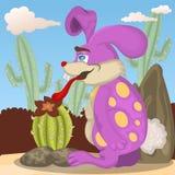 Lapin avec son cactus Images stock