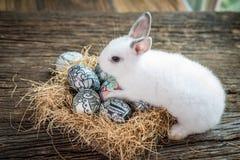 Lapin blanc mignon avec l'oeuf de pâques dans le nid Photographie stock