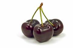 Lapin Cherries Stock Photos