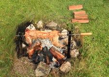 Lapin cuit sur le feu ouvert Photographie stock