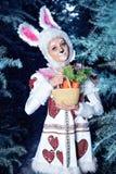 Lapin dans la forêt de neige d'hiver Photographie stock libre de droits