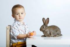 Lapin de alimentation de petit garçon avec la carotte photos stock