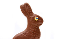 Lapin de chocolat photos libres de droits
