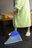 Lapin de la poussière Image stock
