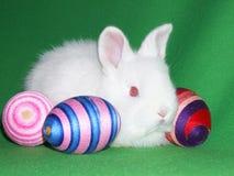 Lapin de Pâques Photographie stock libre de droits