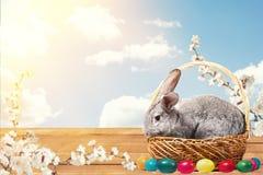 Lapin de Pâques avec des oeufs dans un panier photo libre de droits