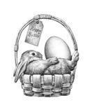 Lapin de Pâques dans un panier Image libre de droits