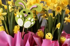 Lapin de Pâques et jonquilles jaunes Images libres de droits