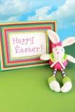 Lapin de Pâques heureux photos stock