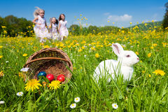 Lapin de Pâques observant l'oeuf chasser Photo stock