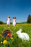 Lapin de Pâques observant l'oeuf chasser photo libre de droits