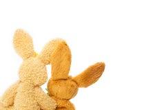 Lapin de Pâques, paire Photos stock