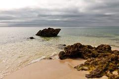 Lapin de plage. Image stock