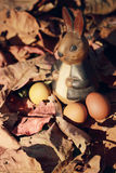 Lapin et oeufs de pâques colorés en nature Image stock