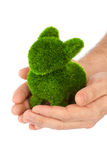 Lapin fait en herbe dans des mains Image libre de droits