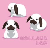 Lapin Holland Lop Cartoon Vector Illustration Image stock
